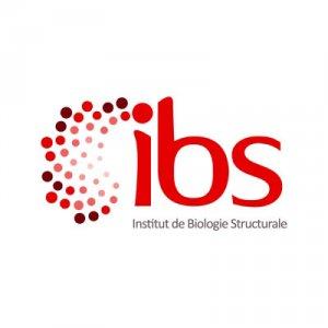Institut de Biologie Structurale - IBS