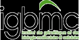 IGBMC- Institut de Génétique et ed Biologie Moléculaire et Cellulaire